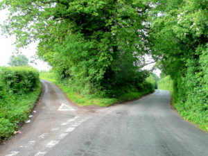 fork_in_the_road_-_geograph-org-uk_-_1355424